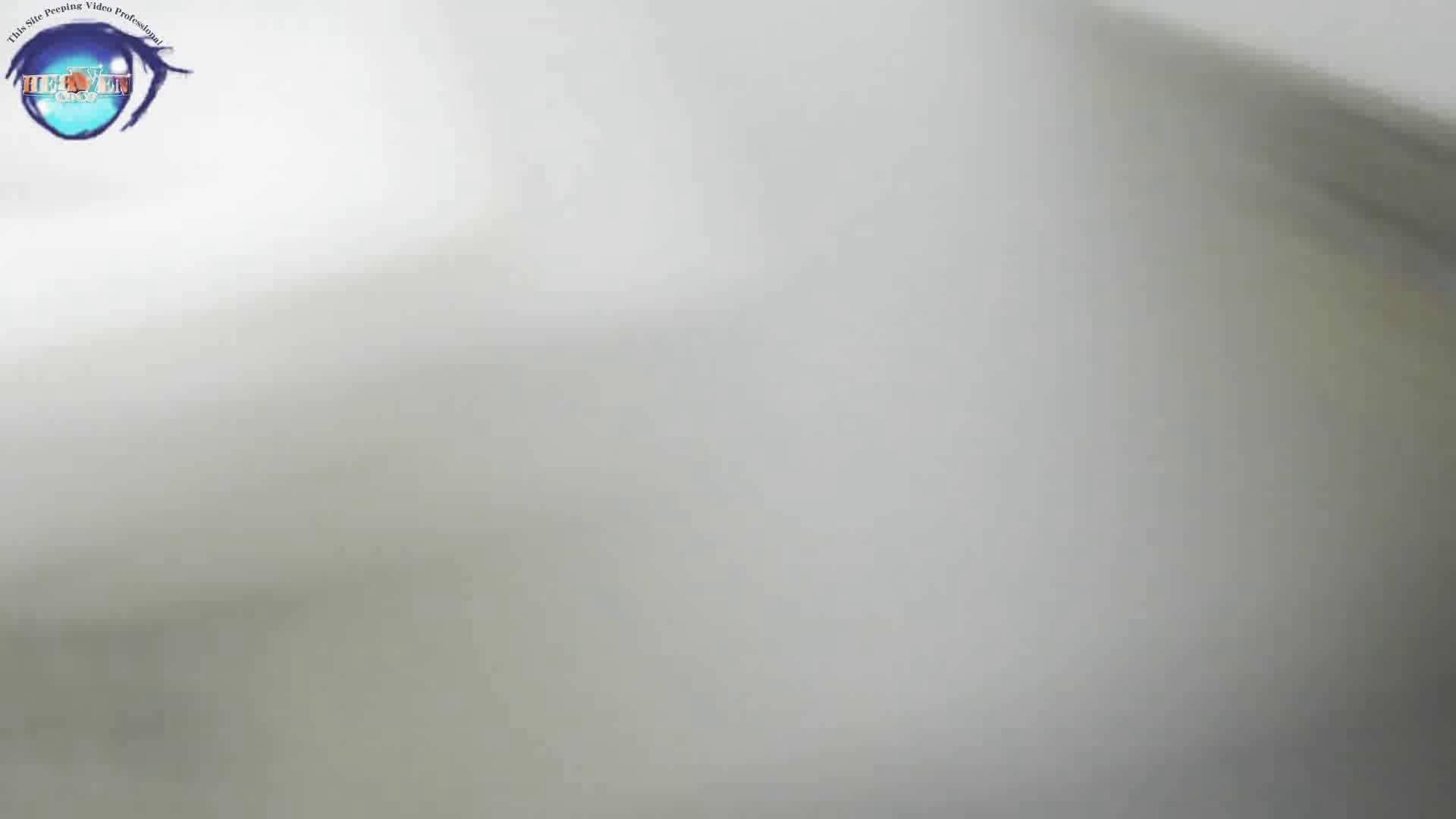 雅さんの独断と偏見で集めた動画集 厠編vol.12 厠  99画像 56
