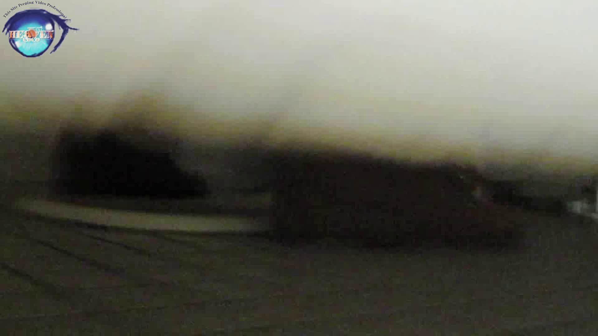 雅さんの独断と偏見で集めた動画集 厠編vol.12 厠   OLセックス  99画像 65