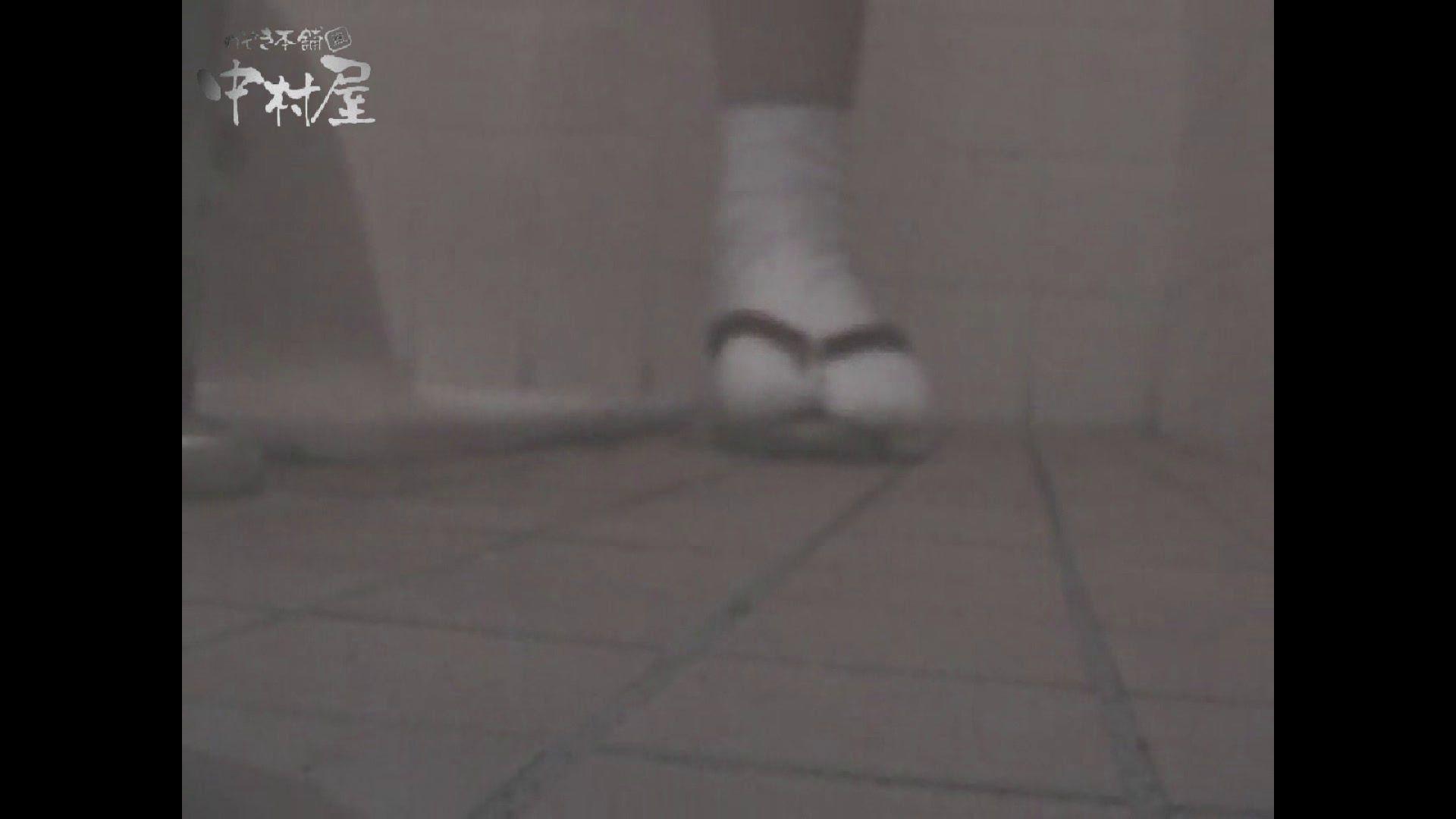 女子トイレ盗撮若い嬢編vol.11 OLセックス 盗撮われめAV動画紹介 50画像 46