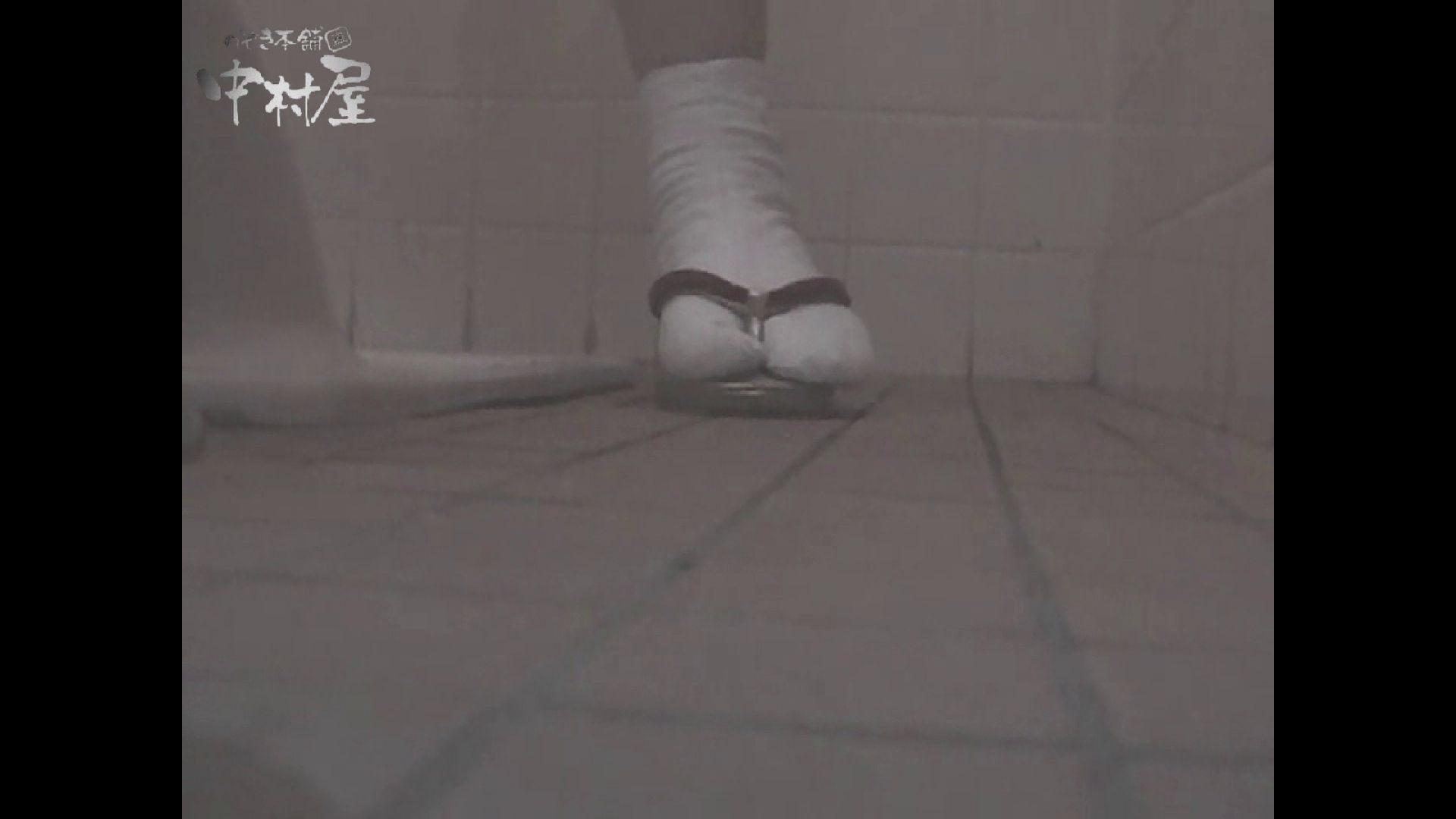 女子トイレ盗撮若い嬢編vol.11 潜入 セックス画像 50画像 48