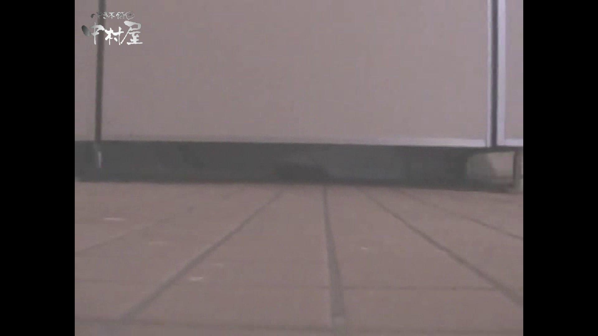 女子トイレ盗撮若い嬢編vol.12 トイレ 盗撮AV動画キャプチャ 58画像 28