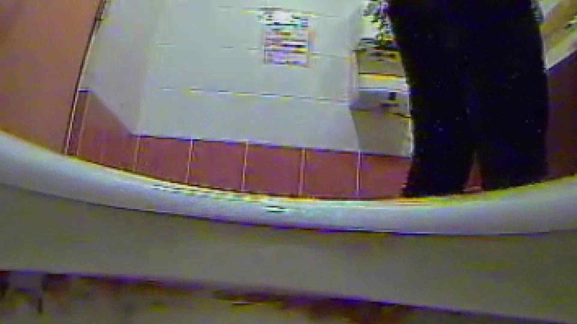 キレカワ女子大生の秘密の洗面所!Vol.017 バックショット 盗み撮り動画キャプチャ 53画像 39