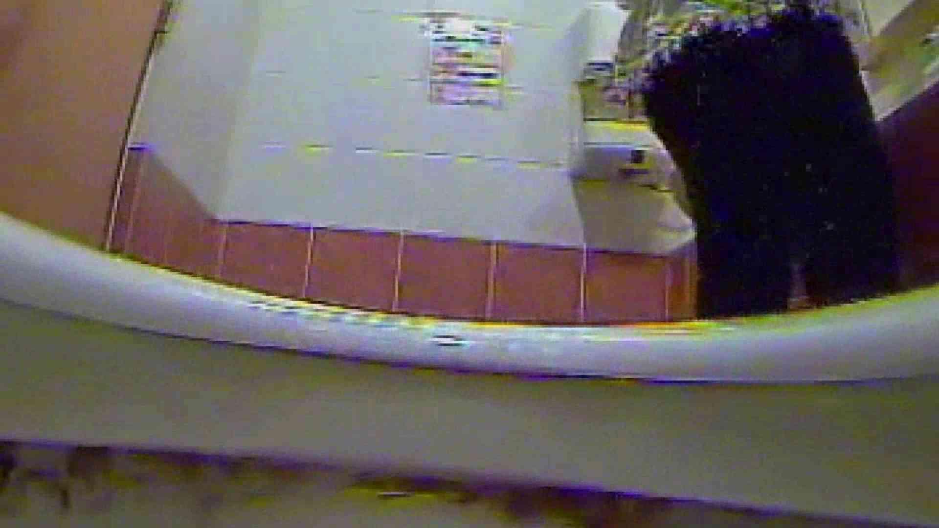 キレカワ女子大生の秘密の洗面所!Vol.017 バックショット 盗み撮り動画キャプチャ 53画像 47