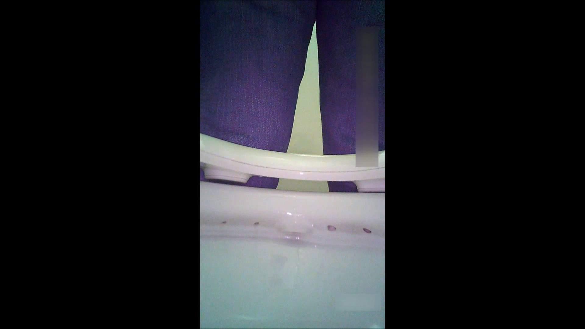 キレカワ女子大生の秘密の洗面所!Vol.051 学校 覗き性交動画流出 91画像 15