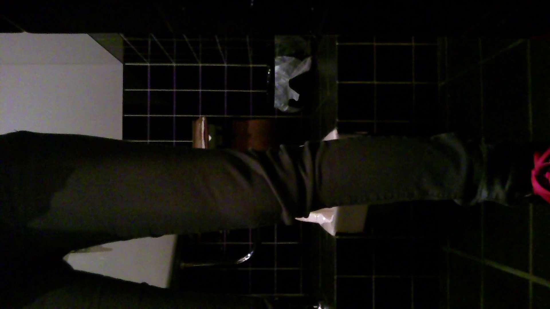 美女の集まる飲み屋洗面所 vol.02 OLセックス  110画像 10