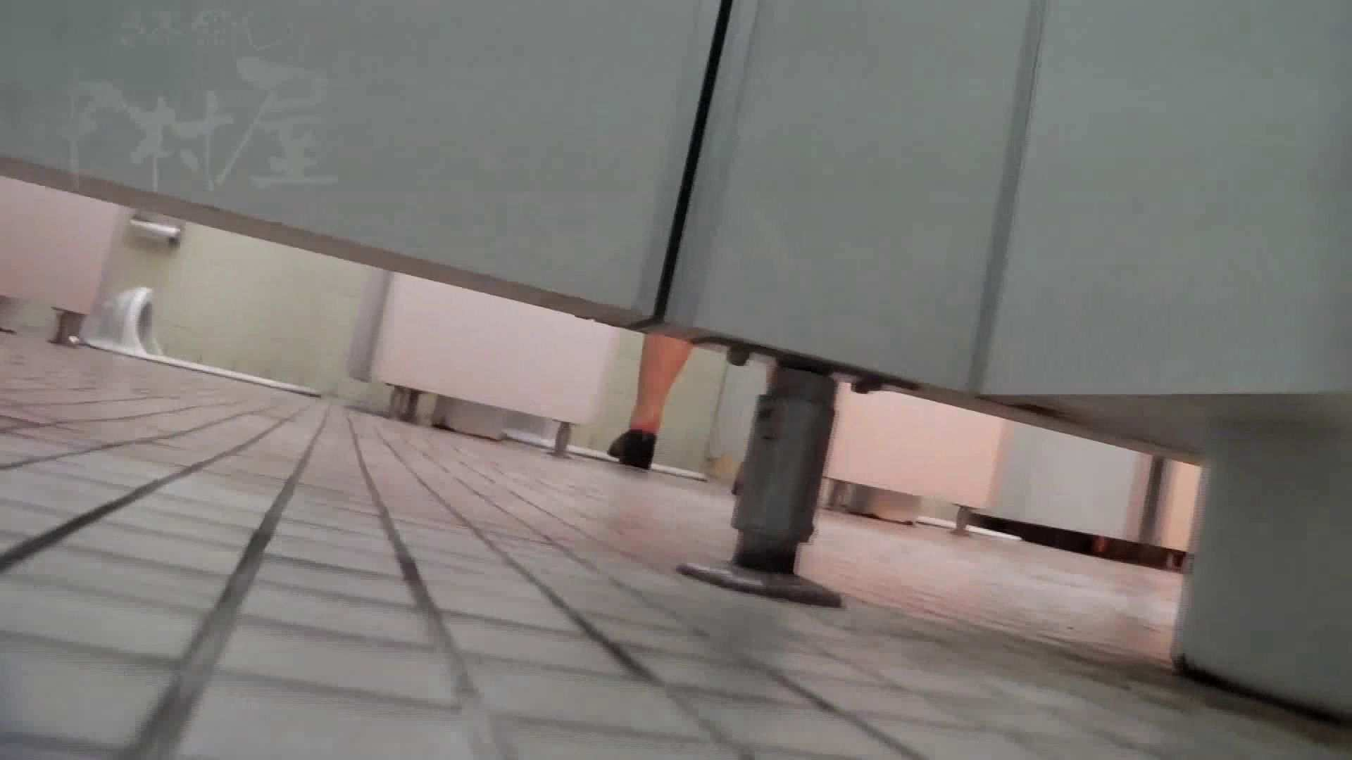 無修正エロ動画|第三体育館潜入撮File024 最後の子公開残りは、SEIJUKU!!|ピープフォックス(盗撮狐)