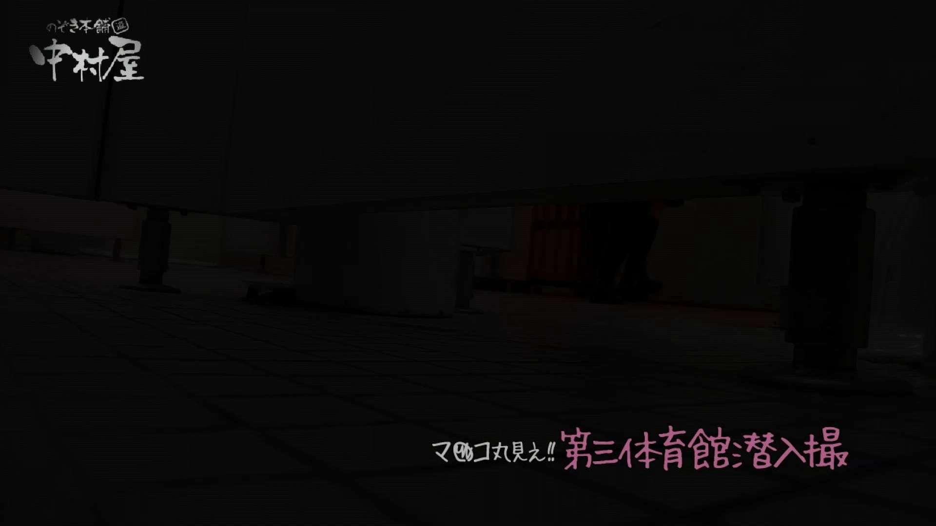 無修正エロ動画|第三体育館File037 分かるでしょう6、ローファーⅡ画質アップ後編|ピープフォックス(盗撮狐)