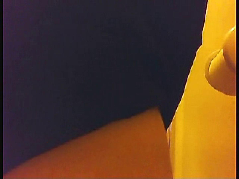漏洩厳禁!!某王手保険会社のセールスレディーの洋式洗面所!!Vol.5 盗撮 ヌード画像 86画像 29