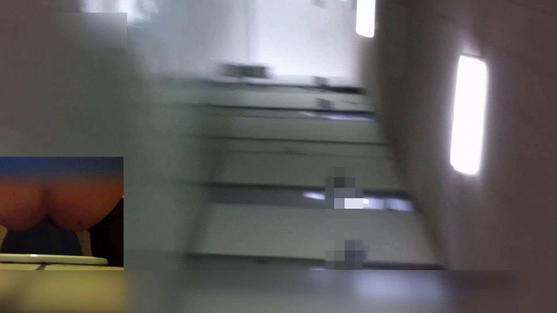 お姉さんの恥便所盗撮! Vol.24 盗撮 すけべAV動画紹介 67画像 13